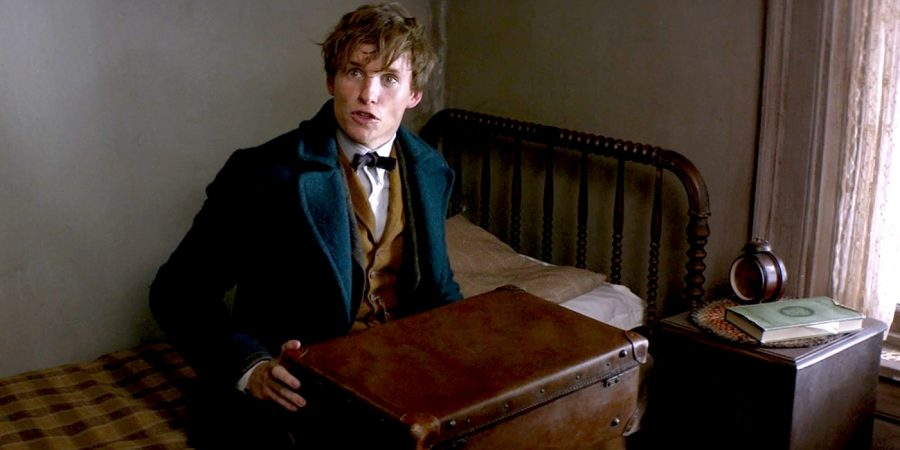 Newt+Scamander%2C+played+by+Eddie+Redmayne.