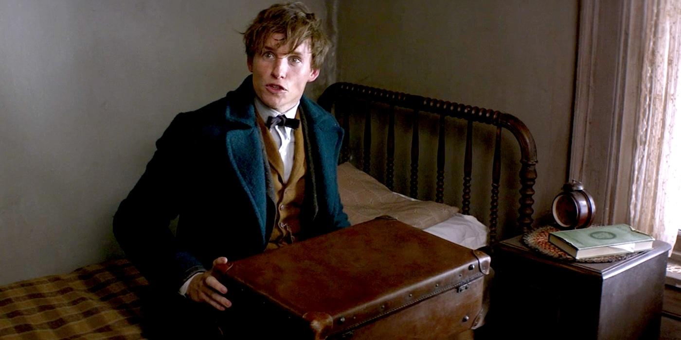 Newt Scamander, played by Eddie Redmayne.