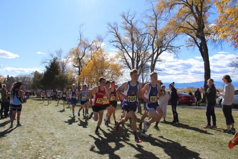 Cross country team finishes season