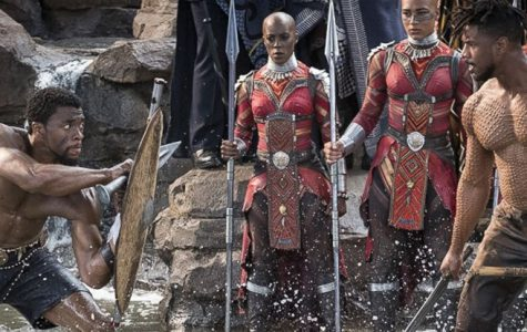 "Roles of king and protector expand ""Black Panther"" hero"